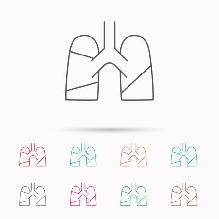 pulmology: Lungs icon. Transplantation organ sign. Pulmology symbol. Linear icons on white background. Illustration