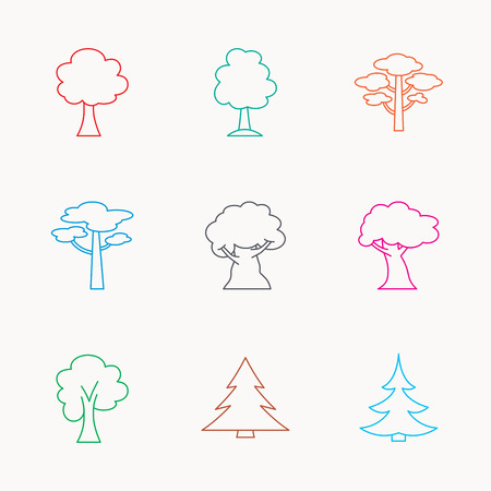wilds: Pine tree, maple and oak icons. Christmas trees linear signs. Forest trees flat line icons. Linear colored icons. Illustration