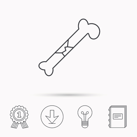 osteo: Bone fracture icon. Traumatology sign. Human bone break. Download arrow, lamp, learn book and award medal icons. Illustration