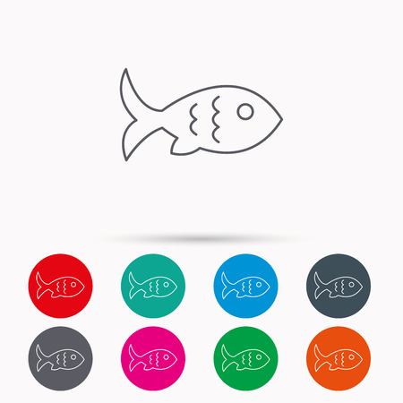 Fish with fin and scales icon. Seafood sign. Vegetarian food symbol. Linear icons in circles on white background.