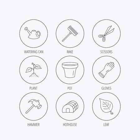 hothouse: Sprout plant, scissors and pot icons. Gloves, rake and watering can linear signs. Hothouse, leaf and hammer flat line icons. Linear colored in circle edge icons.
