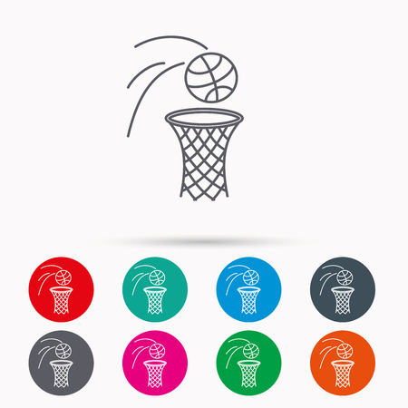 professional sport: Basketball icon. Basket with ball sign. Professional sport equipment symbol. Linear icons in circles on white background.