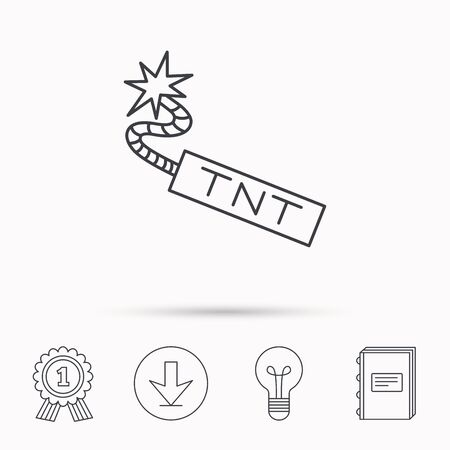 tnt: TNT dynamite icon. Bomb explosion sign. Download arrow, lamp, learn book and award medal icons.