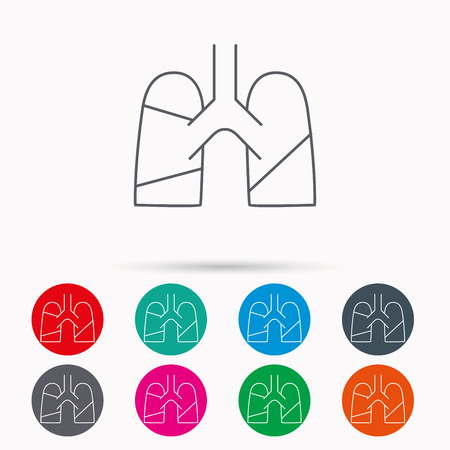 transplantation: Lungs icon. Transplantation organ sign. Pulmology symbol. Linear icons in circles on white background. Illustration