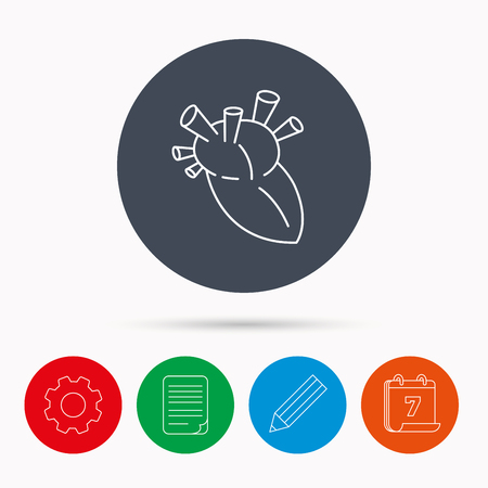 transplantation: Heart icon. Human organ sign. Surgical transplantation symbol. Calendar, cogwheel, document file and pencil icons. Illustration