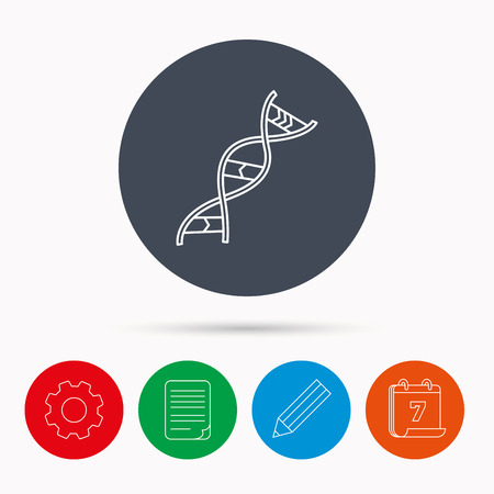 adenine: DNA icon. Genetic evolution structure sign. Biology science symbol. Calendar, cogwheel, document file and pencil icons.