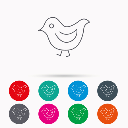 beak: Bird icon. Chick with beak sign. Fowl with wings symbol. Linear icons in circles on white background.