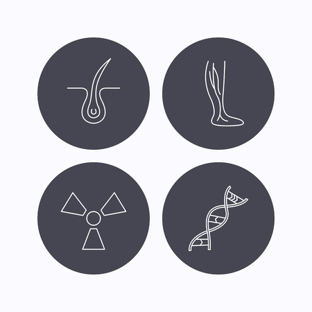varicose veins: Phlebology, trichology and DNA icons. Radiology linear sign. Flat icons in circle buttons on white background. Vector Illustration