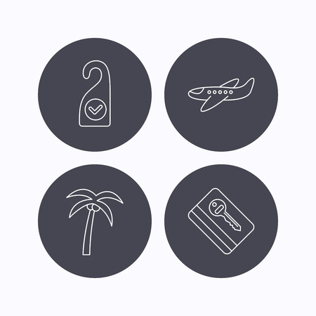 5 door: Palm tree, air-plane and e-key icons. Clean room linear sign. Flat icons in circle buttons on white background. Vector Illustration
