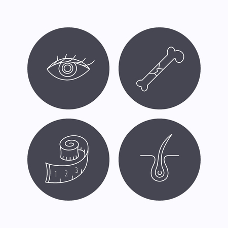 vision loss: Bone fracture, weight loss and trichology icons. Eye linear sign. Flat icons in circle buttons on white background. Vector Illustration