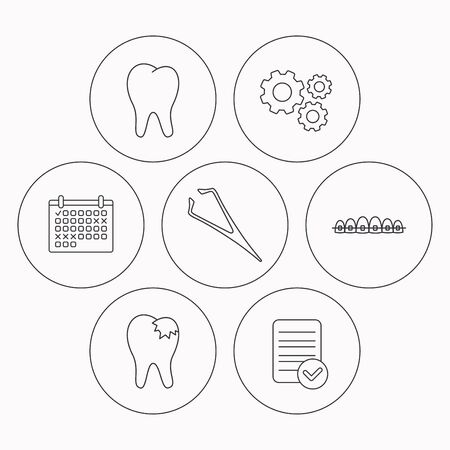 fillings: Dental braces, fillings and tooth icons. Tweezers linear sign. Check file, calendar and cogwheel icons. Vector