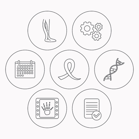 oncology: Phlebology, DNA and X-ray icons. Oncology awareness ribbon linear sign. Check file, calendar and cogwheel icons. Vector
