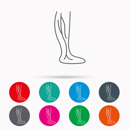 varicose veins: Phlebology icon. Leg veins sign. Varicose or thrombosis symbol. Linear icons in circles on white background.