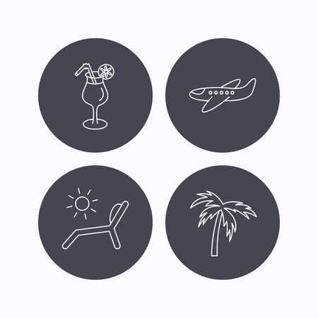 palmtree: Airplane, deck chair and cocktail icons. Palm tree linear sign. Flat icons in circle buttons on white background. Vector
