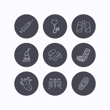 bacteria in heart: Broken foot, lungs and syringe icons. Stethoscope, pills and microscope linear signs. Bacteria, heart and lab bulbs flat line icons. Flat icons in circle buttons on white background. Vector