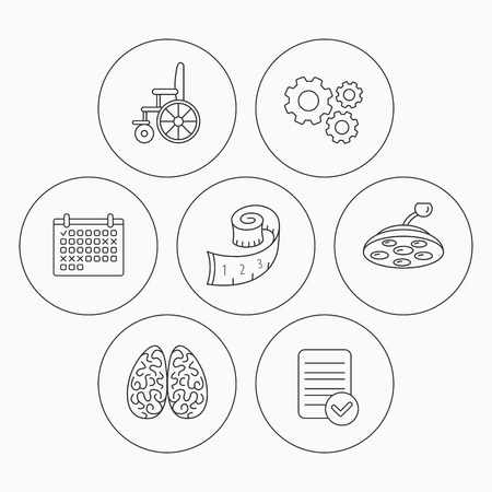 neurosurgery: Wheelchair, neurology and weight loss icons. Surgical lamp linear sign. Check file, calendar and cogwheel icons. Vector Illustration
