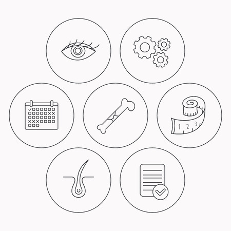vision loss: Bone fracture, weight loss and trichology icons. Eye linear sign. Check file, calendar and cogwheel icons. Vector