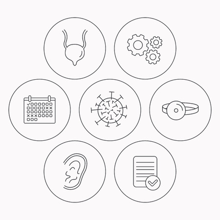 urinary bladder: Virus, urinary bladder and ear icons. Medical mirror linear signs. Check file, calendar and cogwheel icons. Vector Illustration