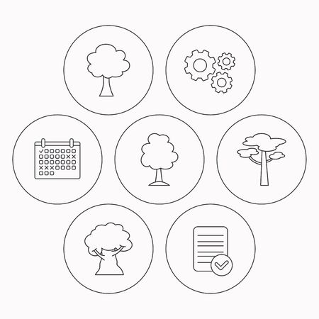 wood tick: Pine tree, oak-tree icons. Forest trees linear signs. Check file, calendar and cogwheel icons. Vector Illustration