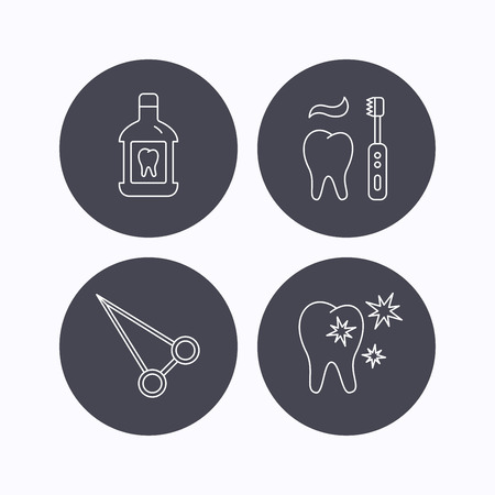 forceps: Mouthwash, healthy teeth and peans forceps icons. Brushing teeth linear sign. Flat icons in circle buttons on white background. Vector