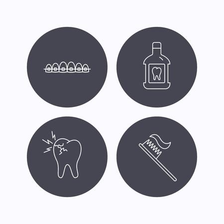 enjuague bucal: Dolor de muelas, aparatos dentales y los iconos de enjuague bucal. signo lineal cepillo de dientes. iconos planos de botones de círculo sobre fondo blanco. Vector