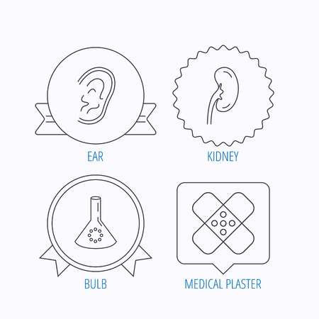 analyses: Lab bulb, medical plaster and ear icons. Kidney linear sign. Award medal, star label and speech bubble designs. Vector
