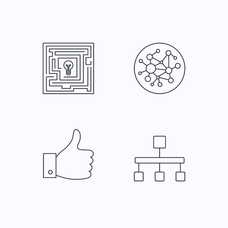 hierarchy: Global network, like and hierarchy icons. Maze linear sign. Flat linear icons on white background. Vector