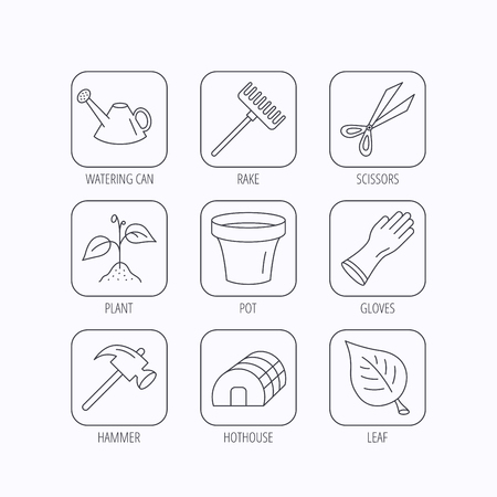 hothouse: Sprout plant, scissors and pot icons. Gloves, rake and watering can linear signs. Hothouse, leaf and hammer flat line icons. Flat linear icons in squares on white background. Vector