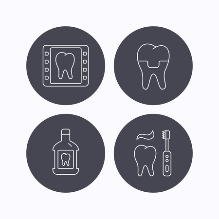 enjuague bucal: corona dental, rayos X y cepillarse los dientes iconos. Enjuague bucal señal lineal. iconos planos de botones de círculo sobre fondo blanco. Vector Vectores