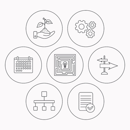 hierarchy: Hierarchy, save nature and direction arrow icons. Maze linear sign. Check file, calendar and cogwheel icons. Vector Illustration