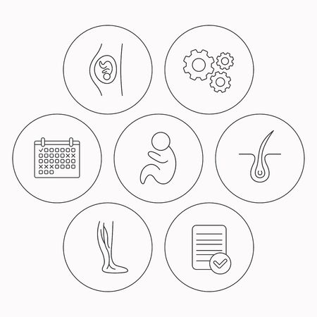 obstetrics: Pregnancy, pediatrics and phlebology icons. Trichology, vein varicose linear signs. Check file, calendar and cogwheel icons. Vector Illustration