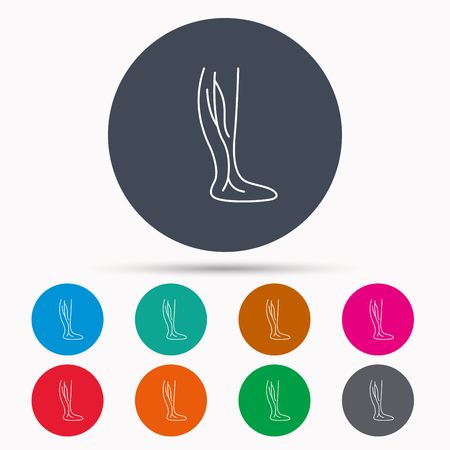 varicose veins: Phlebology icon. Leg veins sign. Varicose or thrombosis symbol. Icons in colour circle buttons. Vector