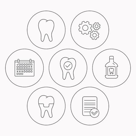 enjuague bucal: Diente, corona dental y enjuague bucal iconos. Revisar los dientes se�al lineal. Comprobador de archivo, calendario y los iconos de la rueda dentada. Vector