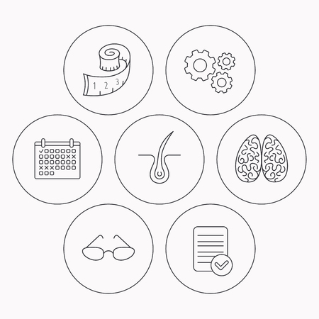neurosurgery: Glasses, neurology and trichology icons. Weight loss linear sign. Check file, calendar and cogwheel icons. Vector
