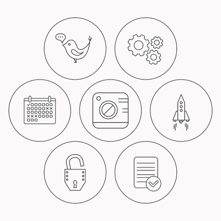 open file: Photo, social media and rocket icons. Open lock linear sign. Check file, calendar and cogwheel icons. Vector Illustration
