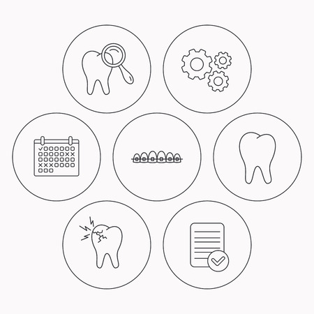 dental braces: Tooth, dental braces and toothache icons. Dental diagnostics linear sign. Check file, calendar and cogwheel icons. Vector Illustration