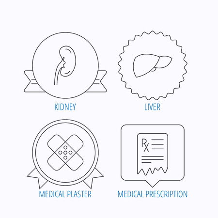 analyses: Liver, medical plaster and prescription icons. Kidney linear sign. Award medal, star label and speech bubble designs. Vector