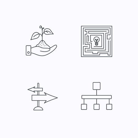 hierarchy: Hierarchy, save nature and direction arrow icons. Maze linear sign. Flat linear icons on white background. Vector
