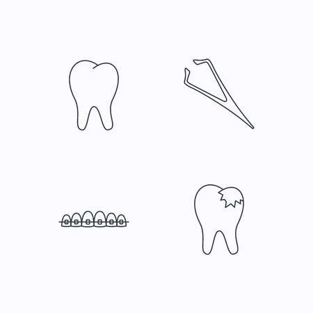 fillings: Dental braces, fillings and tooth icons. Tweezers linear sign. Flat linear icons on white background. Vector