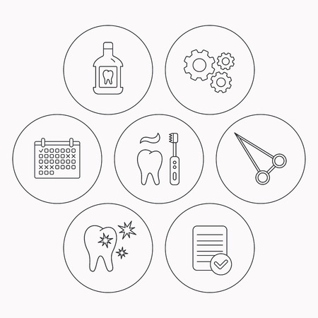 enjuague bucal: Mouthwash, healthy teeth and peans forceps icons. Brushing teeth linear sign. Check file, calendar and cogwheel icons. Vector