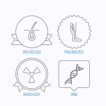 dermatologist: Phlebology, trichology and DNA icons. Radiology linear sign. Award medal, star label and speech bubble designs. Vector