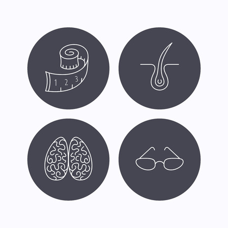 dermatologist: Glasses, neurology and trichology icons. Weight loss linear sign. Flat icons in circle buttons on white background. Vector Illustration