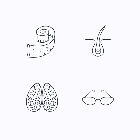 dermatologist: Glasses, neurology and trichology icons. Weight loss linear sign. Flat linear icons on white background. Vector