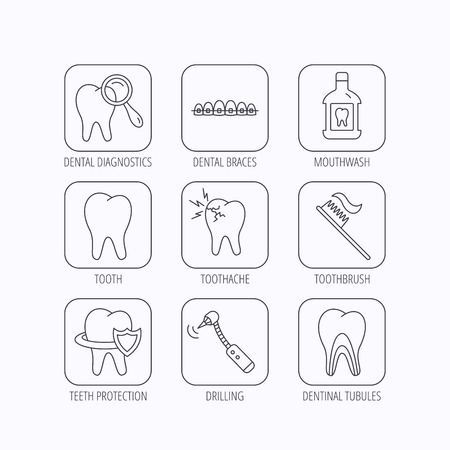 dental braces: Tooth, dental braces and mouthwash icons. Diagnostics, toothbrush and toothache linear signs. Dentinal tubules, protection flat line icons. Flat linear icons in squares on white background. Vector