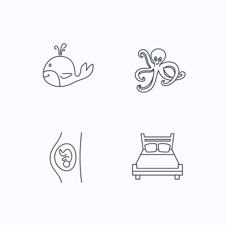 gynaecology: Whale, octopus and double bed  icons. Pregnancy linear sign. Flat linear icons on white background. Vector