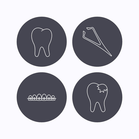 fillings: Dental braces, fillings and tooth icons. Tweezers linear sign. Flat icons in circle buttons on white background. Vector Illustration