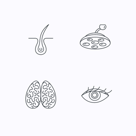dermatologist: Eye, neurology brain and surgical lamp icons. Trichology linear sign. Flat linear icons on white background. Vector Illustration