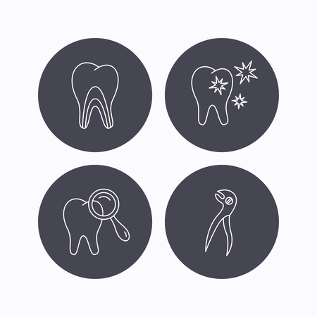 diagnostics: Healthy teeth, dentinal tubules and pliers icons. Dental diagnostics linear sign. Flat icons in circle buttons on white background. Vector