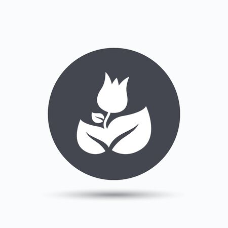 florist: Rose flower icon. Florist plant with leaf symbol. Flat web button with icon on white background. Gray round pressbutton with shadow. Vector