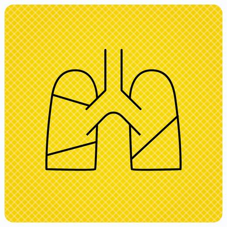 pulmology: Lungs icon. Transplantation organ sign. Pulmology symbol. Linear icon on orange background. Vector Illustration